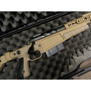 Accuracy International Chassis System with Remington Rifles